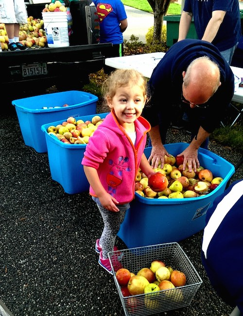 Ava having fun washing apples at the cider party