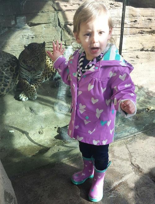 Having fun at the zoo