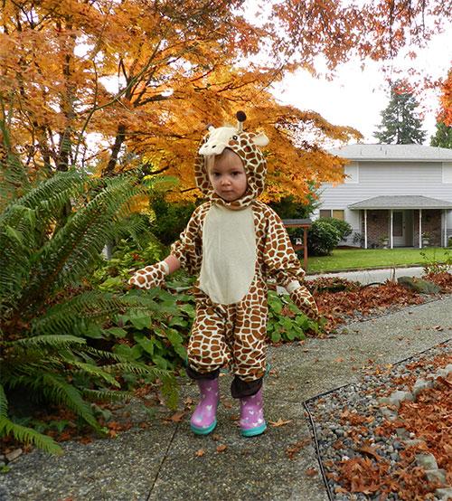 Our little giraffe
